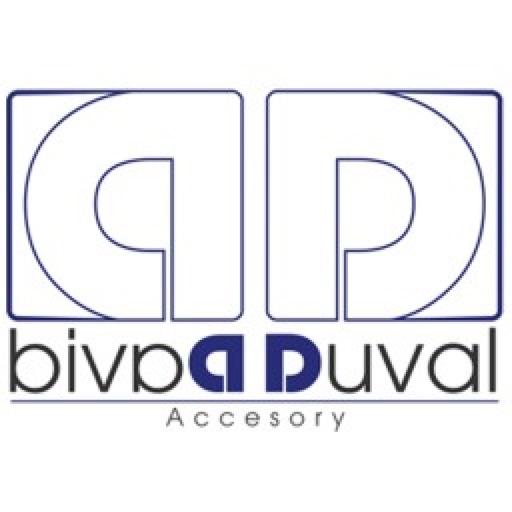 DD ACCESORY application logo