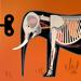 5.哺乳动物 Tinybop出品