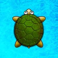 Codes for Turtle Surfer Hack