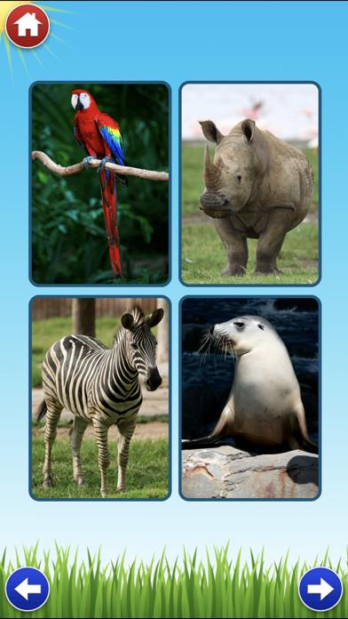 Zoo Sounds Lite - A Fun Animal Sound Game for Kids screenshot two