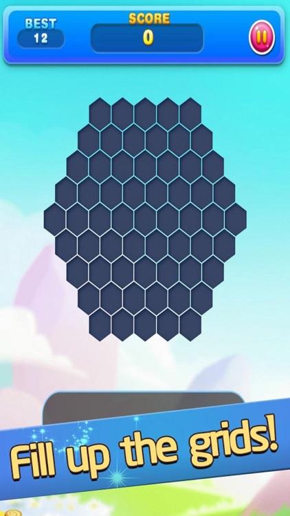 Hex Block Plus Fun
