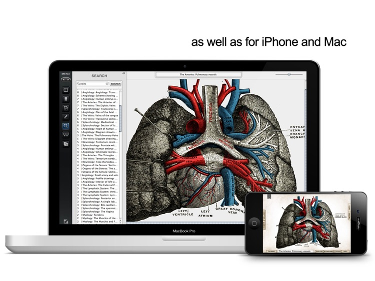 Grays Anatomy Student Edition for iPad screenshot-4