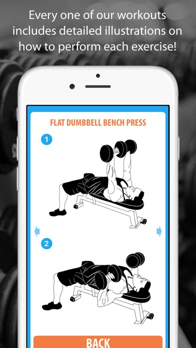 Female Bodybuilding Workout Plan screenshot four