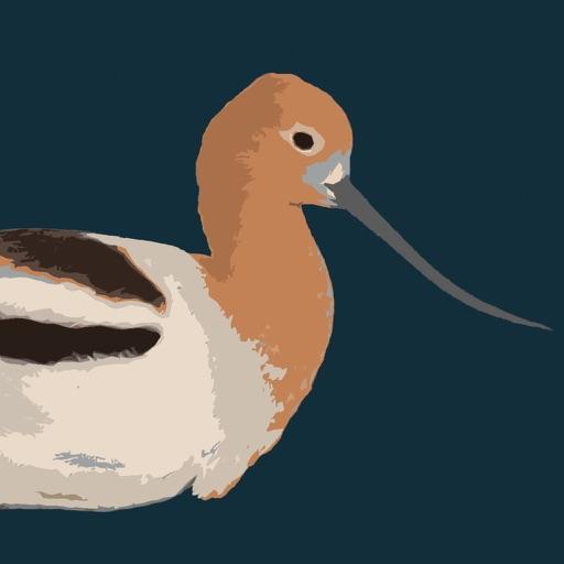 Birding Utah