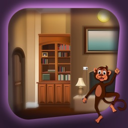 Can You Help The Monkey Escape?