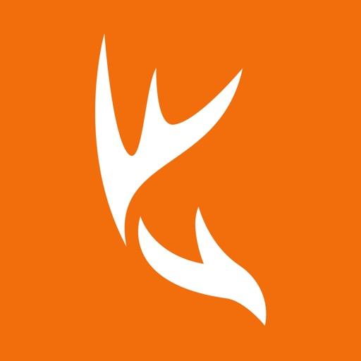 HuntWise app logo