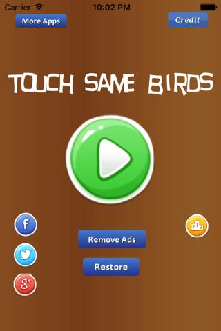 Touch Same Birds - náhled