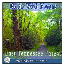East Tennessee Forest for iPad