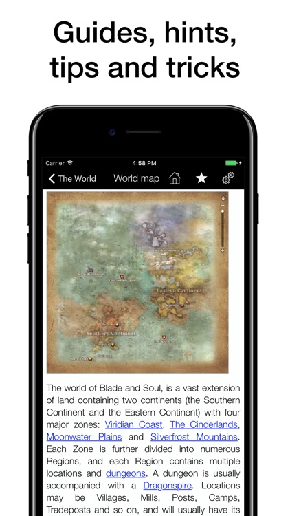 Pocket Wiki for Blade & Soul