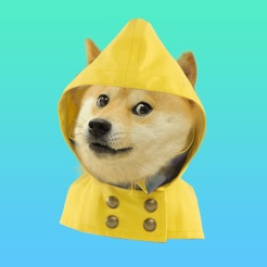 doge weather on the app store