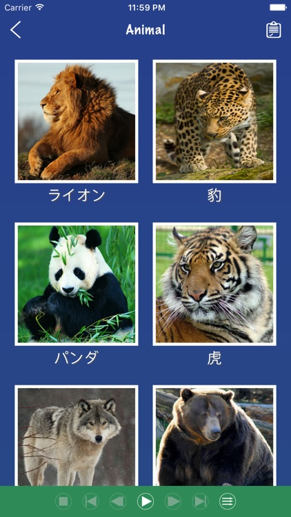 Japanese Word Flashcards Learn