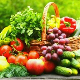 Vegan Diet Recipes