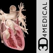 Heart Pro Iii app review