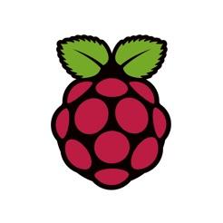 Raspberry Pi  - mit dieser iOS-App hast du all deine