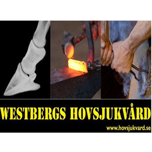 Westberg Remiss