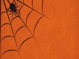 Spider Stickers - Sid Y