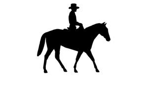 Wild Wild Westerns