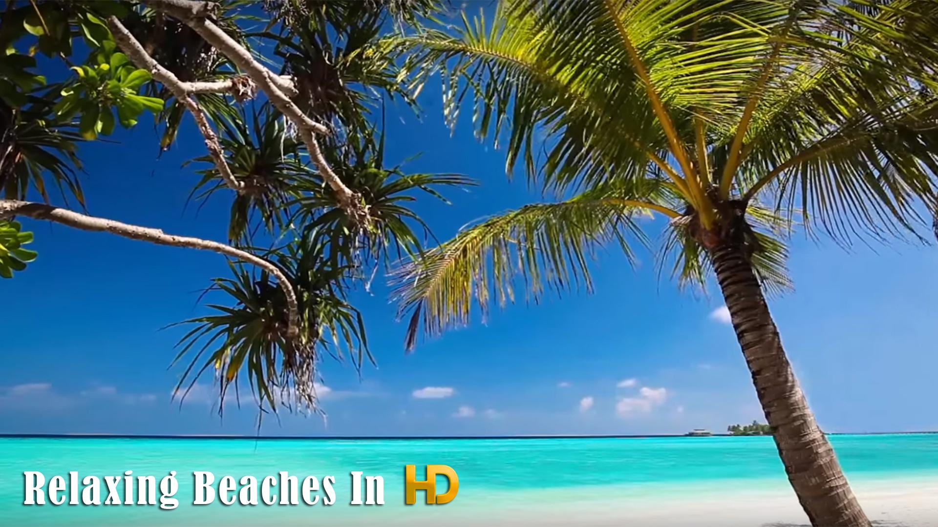 Relaxing Beaches In HD screenshot 8