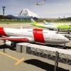 City Airplane Flight Driving