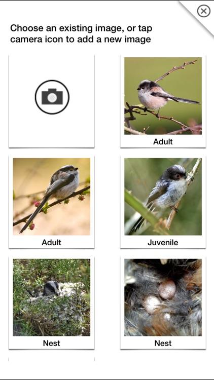 Birds of Britain Pro screenshot-9