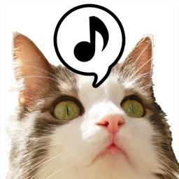 にゃお〜ん天国 - 猫の鳴き声ゲーム