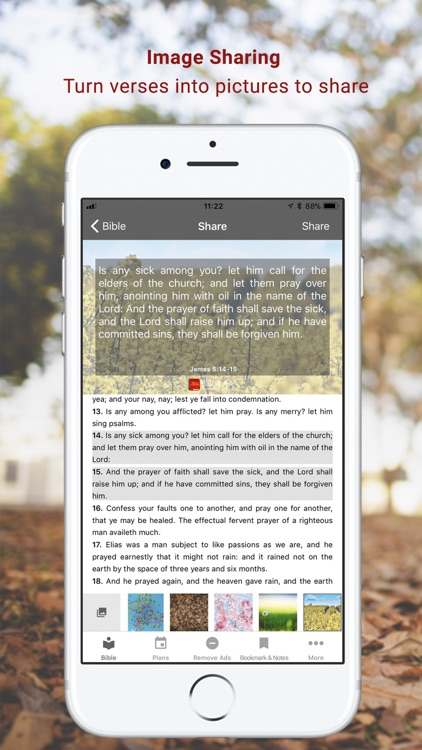 Bible KJV screenshot-2