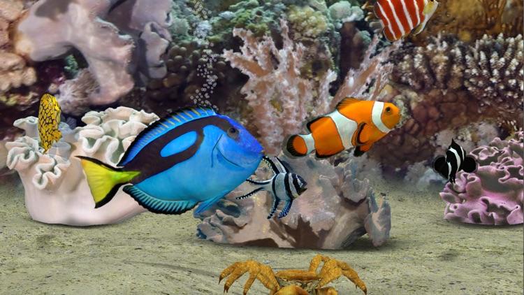 MyReef 3D Aquarium 2 HD screenshot-4