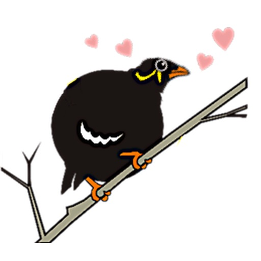 Grackle Bird Sticker