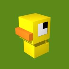 Activities of Duck's Trip