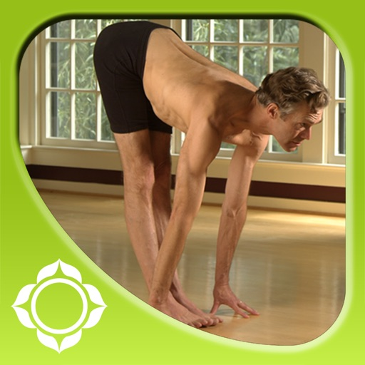Ashtanga Yoga - Introduction - Richard Freeman