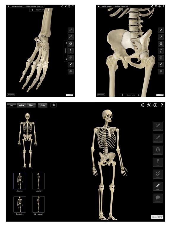 Skeleton System Pro IIIのおすすめ画像2