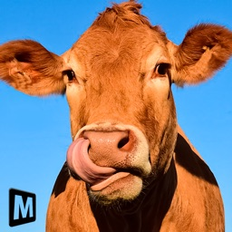 Euro Farm Simulator: Livestock