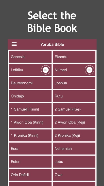 Yoruba Audio Bible screenshot-2