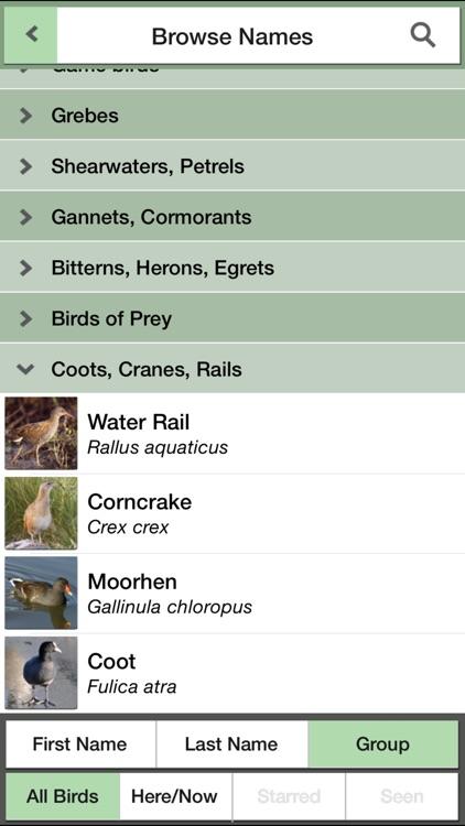 Birds of Britain Pocket Guide