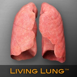 Living Lung™ - Lung Viewer