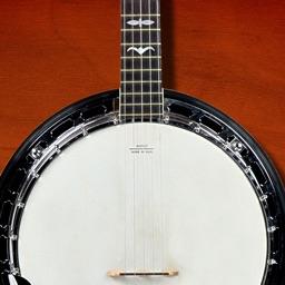 Banjo Companion