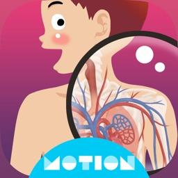 MotionBody