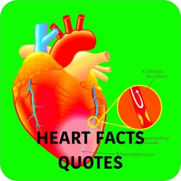 Human Heart Facts & Quiz 3000