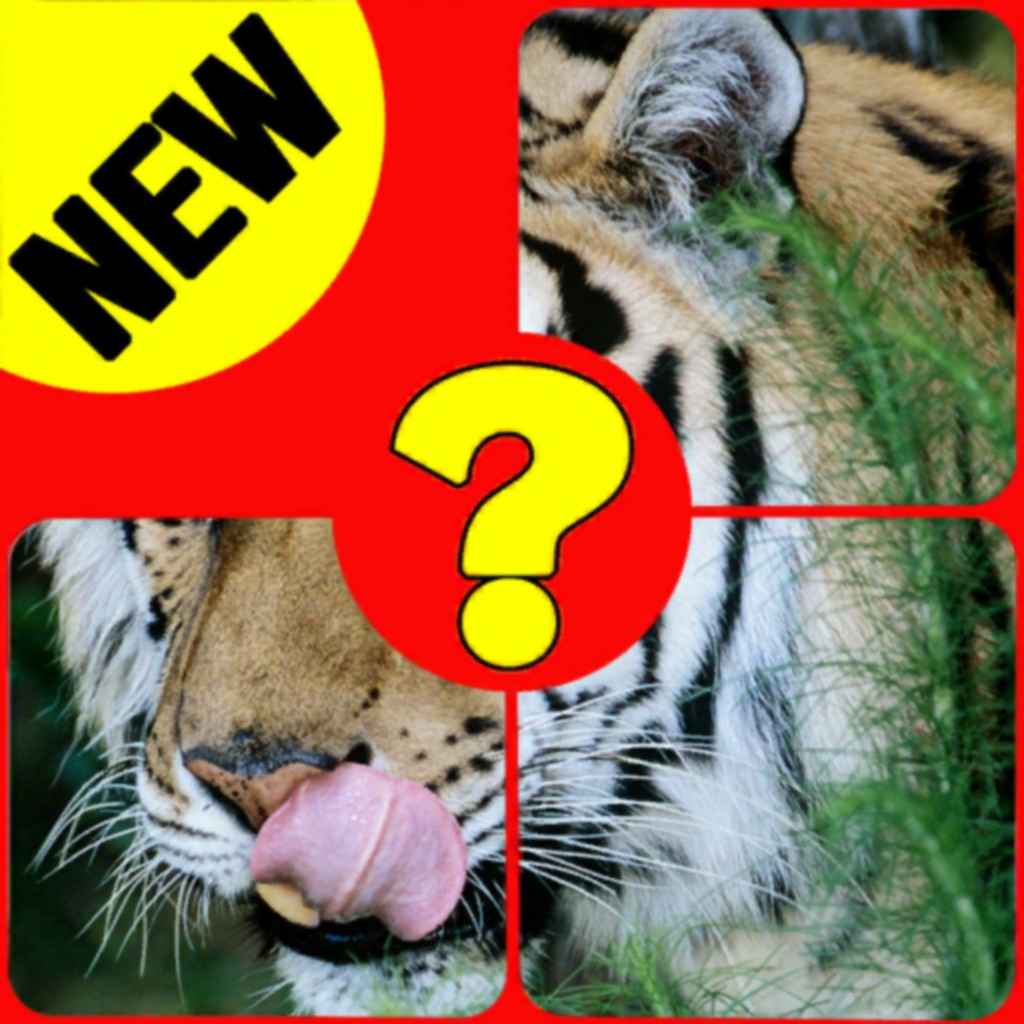 Animal kingdom quiz name hack