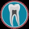 Dental Corpus Primary - Dental Corpus