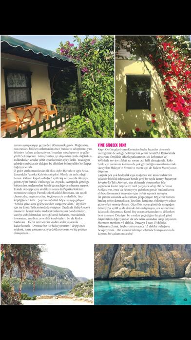 BON VOYAGE Magazine screenshot 4