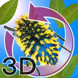The 3D Insects SI