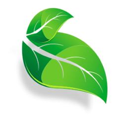 Plant Identifier - Offline