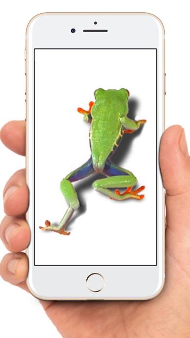 Maus auf dem Bildschirm WitzScreenshot von 9
