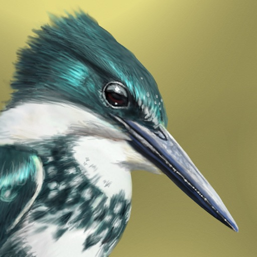 iBird Lite Guide to Birds