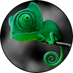 Highlight Color: Create stylish effects on your photos with your image's best colors highlighted from the background