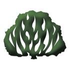 Ipe Nilopolis icon