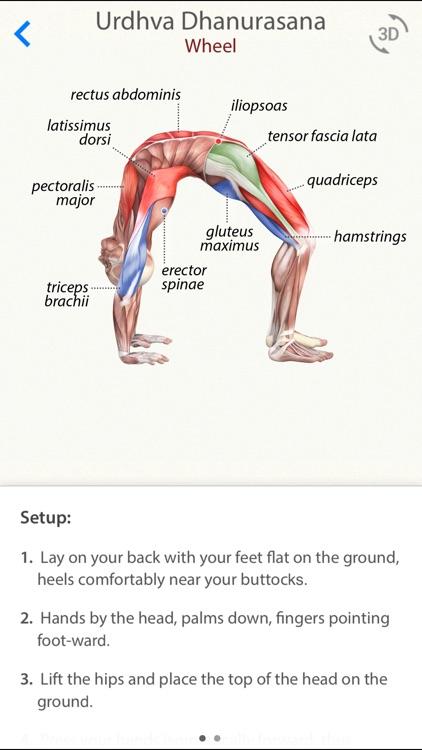 3D Yoga Anatomy screenshot-0