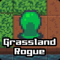Codes for Grassland Rogue Hack