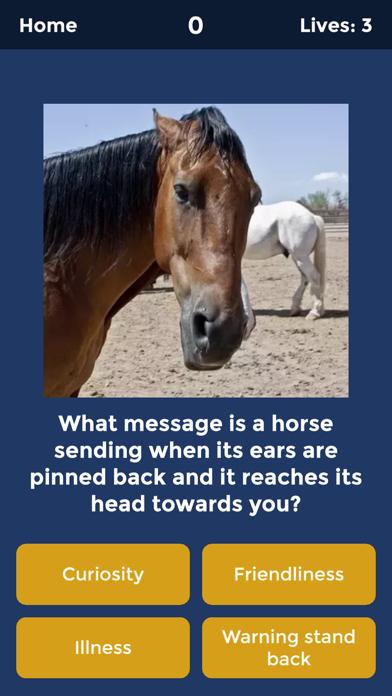 Horse Quiz by HayGrazer screenshot 2